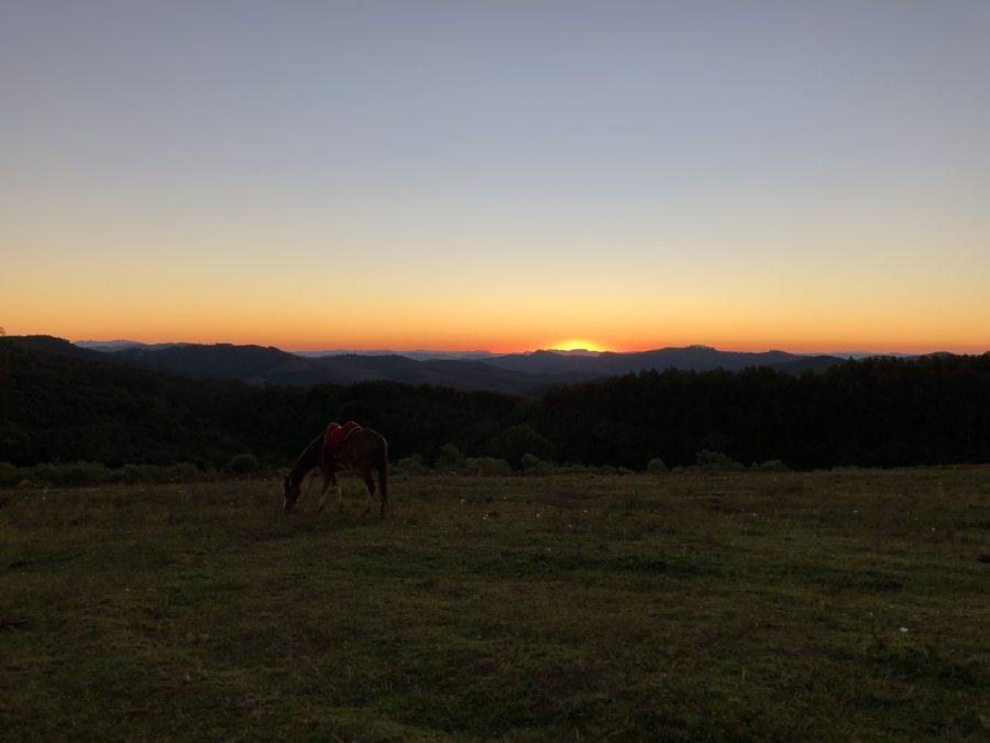 Passeios a cavalo (foto: Alan Corrêa)