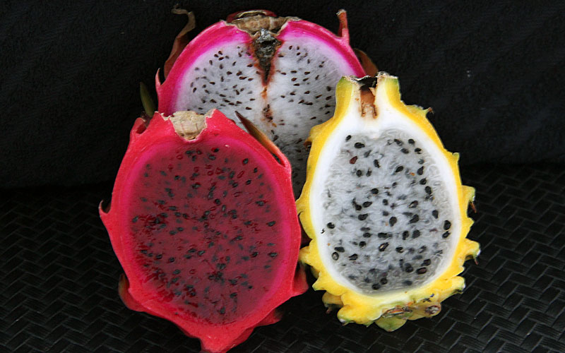 Como comer Pitaya, a fruta dragão que tem benefícios, mas pode dar até diarreia